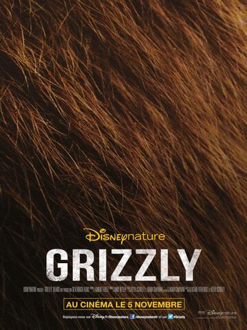 File:Bears French Poster.jpg
