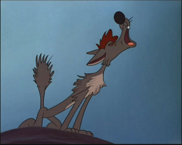 File:Bent-Tail Coyote howling.jpg