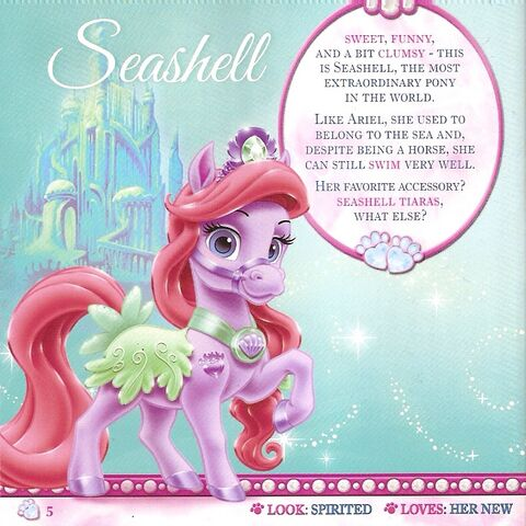 File:Seashell.jpg
