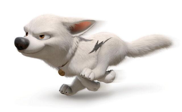 File:Bolt run.jpeg