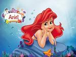 Ariel wd