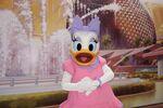 Daisy in EPCOT