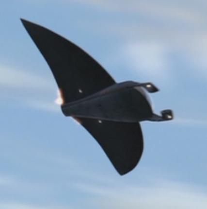 File:Manta Jet Bottom.jpg
