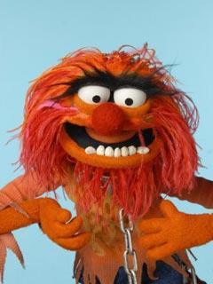 File:TF1-MuppetsTV-PhotoGallery-44-Animal.jpg