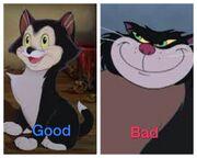 Black meow