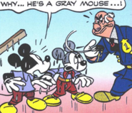 Mickey mouse miklos