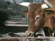 1962-sancho-02