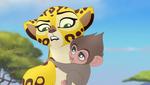 Fuli and the baboon