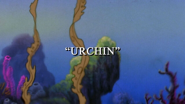 File:Urchin1.jpg