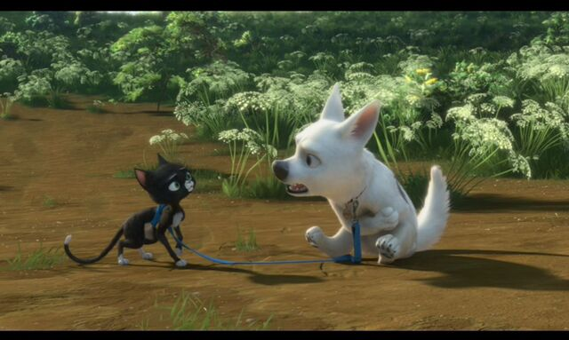File:Cute-pictures-of-Bolt-and-Mittens-disneys-bolt-5261749-1433-858.jpg