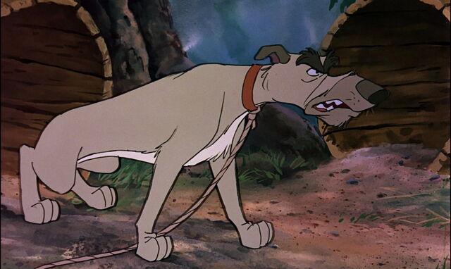 File:Fox-and-the-hound-disneyscreencaps.com-4728.jpg
