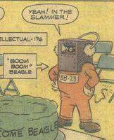 File:Boom Boom Beagle.jpg