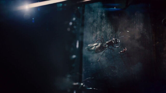 File:Ant-Man (film) 46.jpg