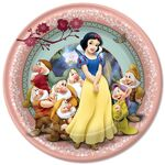 Snow-white-lunch-plates