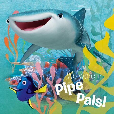 File:Shark 1.jpg
