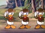 Huey Dewey Louie-Good Scouts