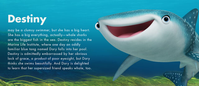 File:Finding Dory Character Profiles 03.jpg