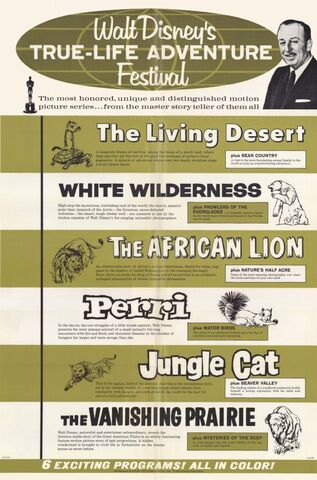 File:Walt-disneys-true-life-adventure-festival-movie-poster-1964-1020205114.jpg