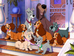 Lady-And-The-Tramp-Wallpaper-classic-disney-7326007-1024-768
