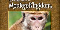 Monkey Kingdom (video)