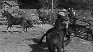 File:The horse of the west.jpg