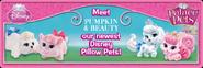 MPPLandingPageArt BeautyPumpkin