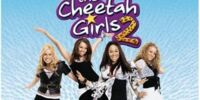 The Cheetah Girls 2 (soundtrack)