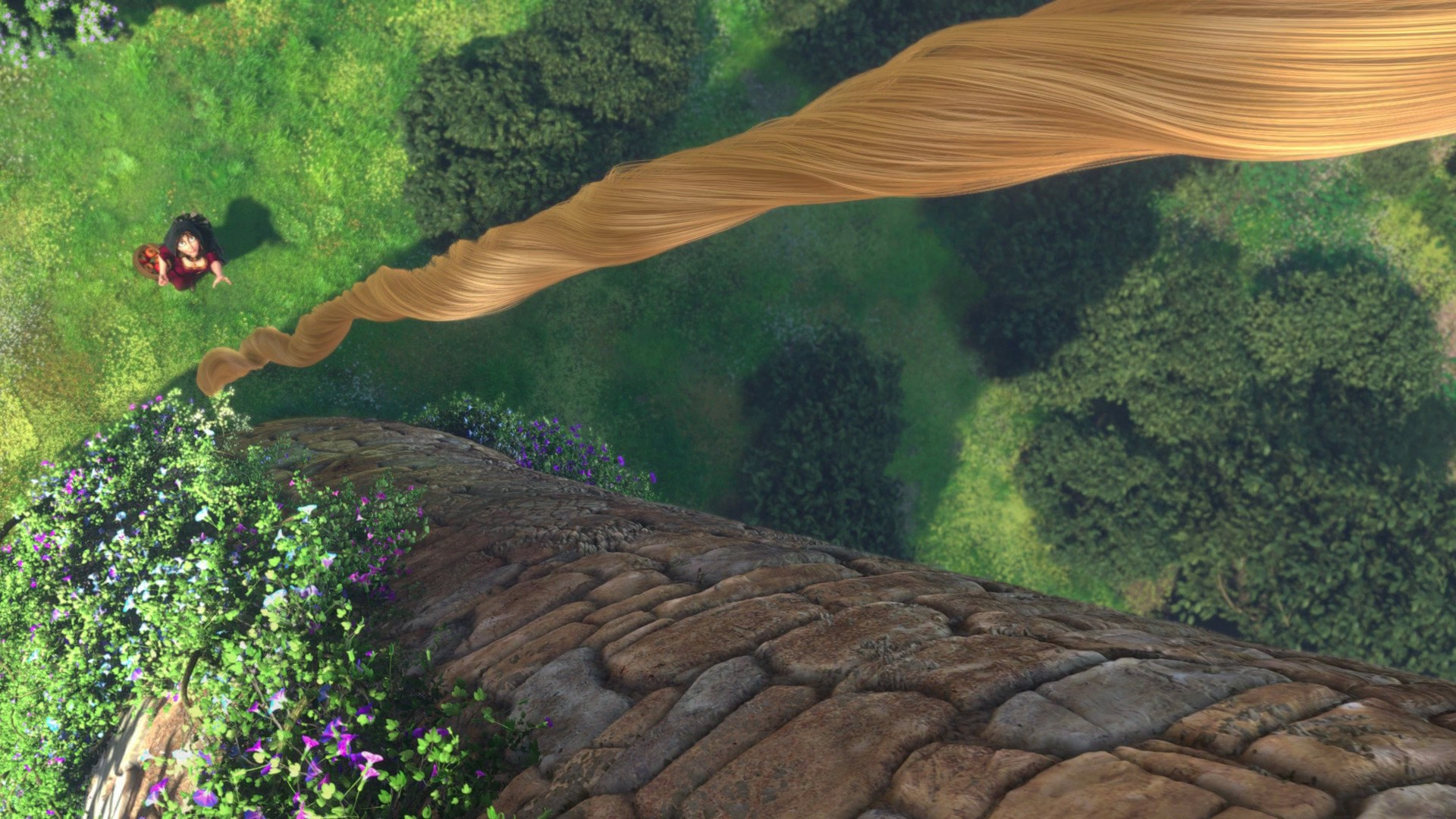 File:Rapunzel's hair.jpg