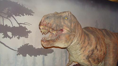 File:Natural History Museum, London.jpg