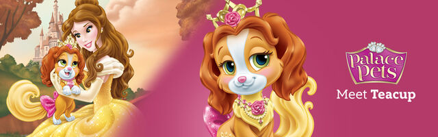 File:Belle and Teacup Banner.jpg