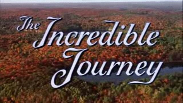 File:The Incredible Journey Title Card.jpg