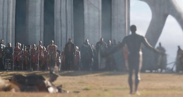 File:Black Panther (film) 29.jpg