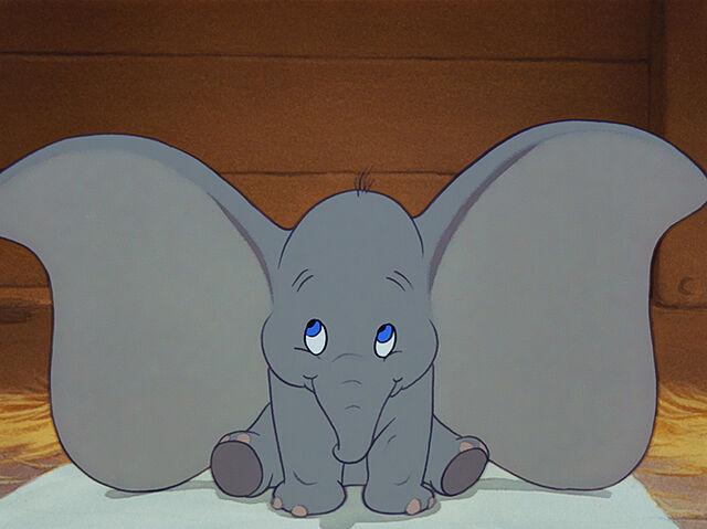 File:Dumbo-ears.jpg