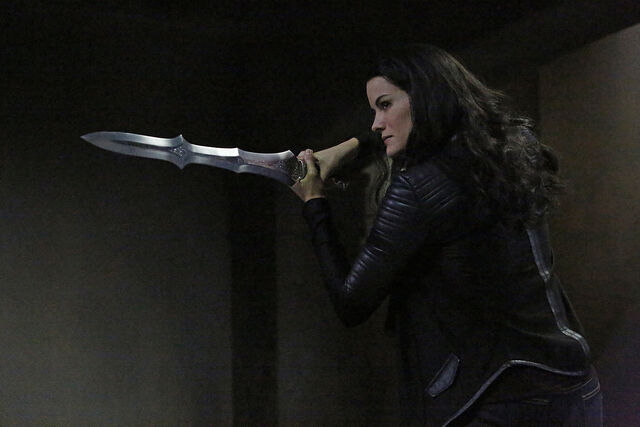 File:Agents-of-shield-s2-ep12-who-you-really-are-still-image-01.jpg