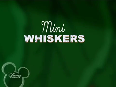 File:Mini Whiskers.jpg