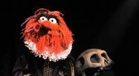 Muppets-com80