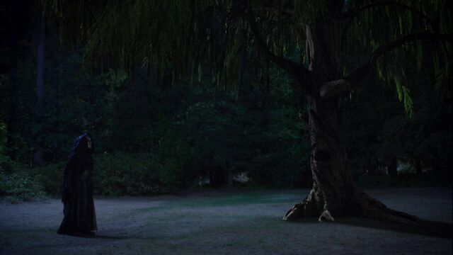File:Once Upon a Time - 5x05 - Dreamcatcher - First Dark One and Tree Merlin.jpg