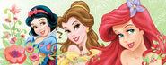 Disney Princess Garden of Beauty 8