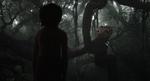 Jungle Book 2016 50