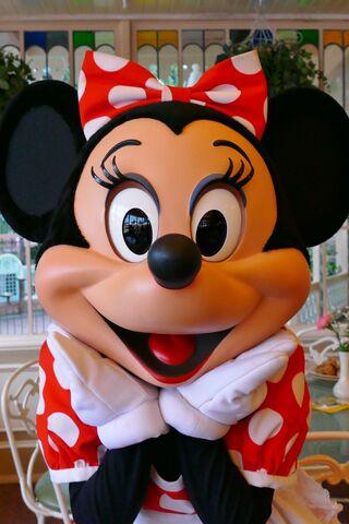 File:Minnie Mouse Photo2.jpg
