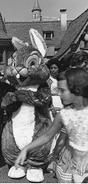 Thumper 1960s