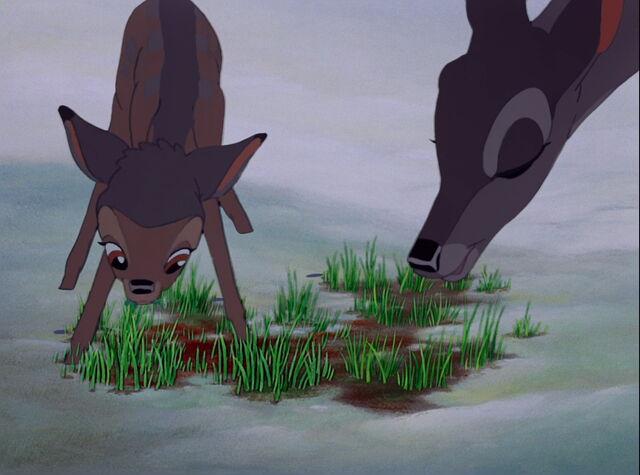 File:Bambi-disneyscreencaps.com-4609.jpg