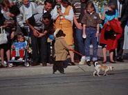 Dog leading a dog