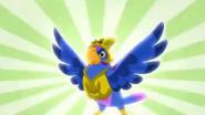 Talon feathered 4