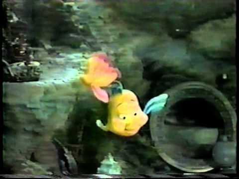 File:Flounder3.jpg