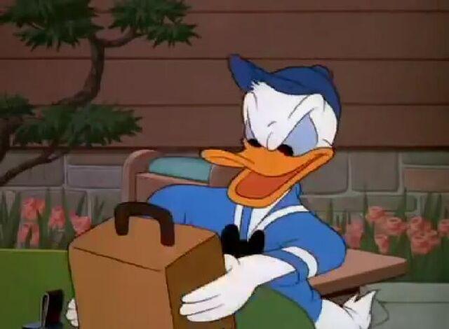 File:Donald Duck Slide Donald Slide1.jpg