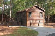 Fort Wilderness cabin