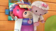 Lambie and xyla