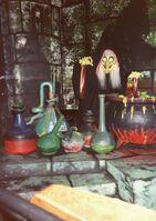 Cauldronwitch