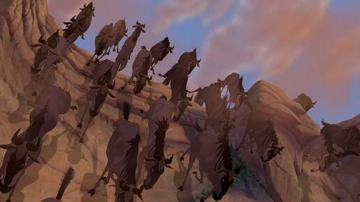 Wildebeests Disney Wiki Fandom Powered By Wikia